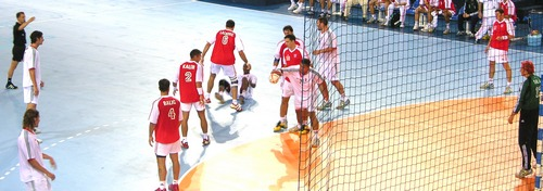 ../../images/Handball-game-500.jpg