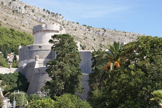 ../../images/Dubrovnik-walls-castle-and-trees.jpg